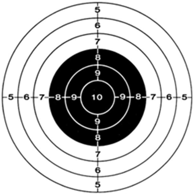 Соревнования по пулевой стрельбе «Приз первокурсника ГУМРФ – 2017»